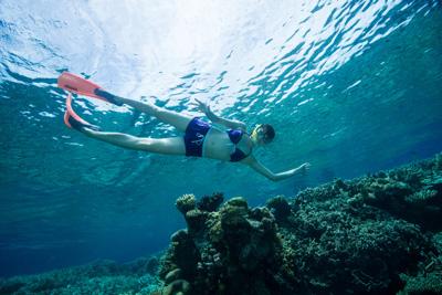 石垣島のダイビングショップKUKURUの予約状況