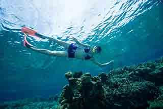 石垣島のダイビングショップで楽しめるシュノーケリング
